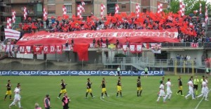 Pronostici Serie B 38^ giornata del 28-04-2015